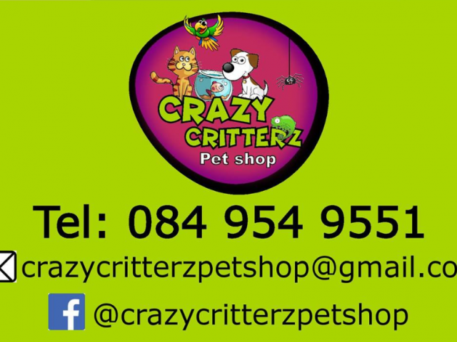 Crazy Critterz Pet Shop